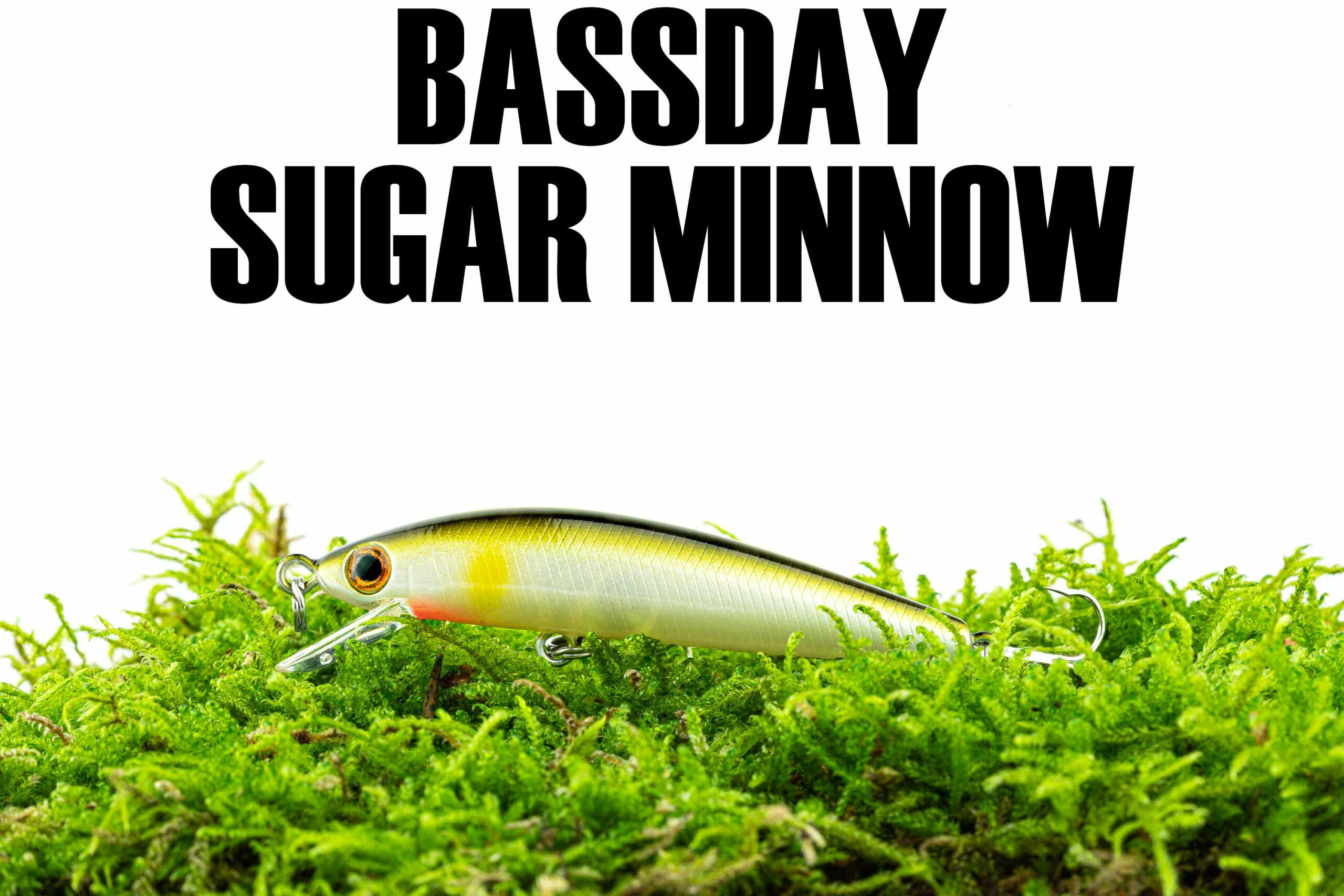 Bassday Sugar Minnow