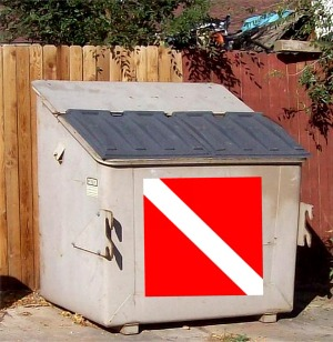 DumpsterDive