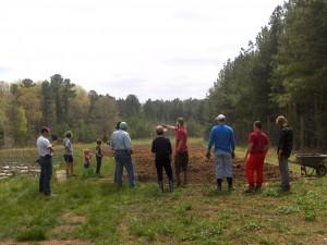 Community Asparagus Planting