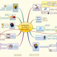 Mindmapping et trouble de l'attention (TDA/H) chez l'adulte