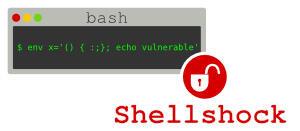 ShellShock spiegato in modo semplice: quali sono i rischi per gli utenti?