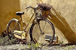 """<span class=""""entry-title-primary"""">Registrazione domini con estensione: .bike</span> <span class=""""entry-subtitle"""">L'estensione di dominio ideale per il ciclismo e gli appassionati di bici</span>"""