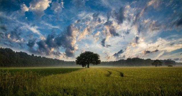 Si parla sempre più di cloud, ma in pochi hanno davvero capito (News)