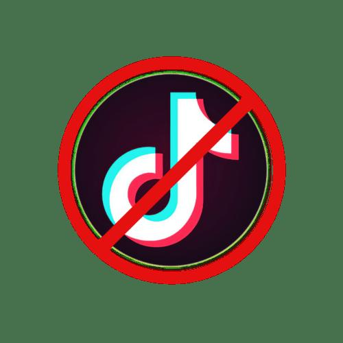 Tik Tok: blocco dal Garante per la Privacy italiano (News)