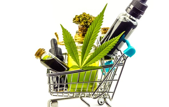 Spinal Cord Injuries and CBD