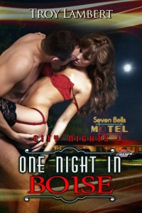 One Night in Boise by Troy Lambert - 1800HR