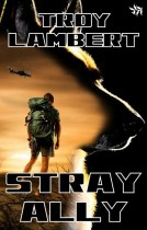 Stray Ally by Troy Lambert - high res