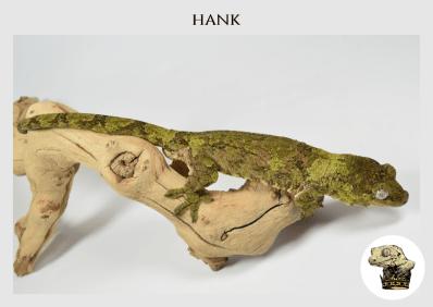 (4) Hank