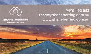 Shane Herring