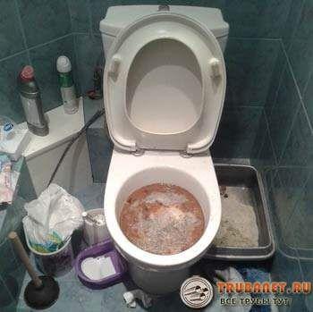 Foto - Vomor în toaletă