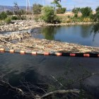 Diversion to TMWA's Glendale Water Facility on the Truckee River