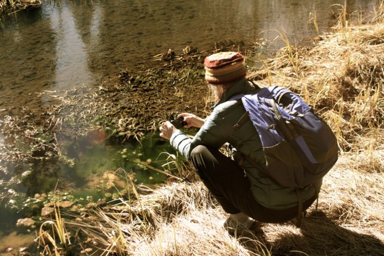 Kaitlin Backlund collects an observation for iNaturalist at Sagehen Creek. Feb 5, 2015.