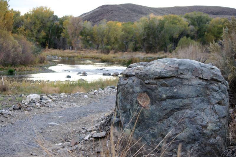 A boulder, Mustang Ranch Preserve. Truckee River, Nov 1, 2015.