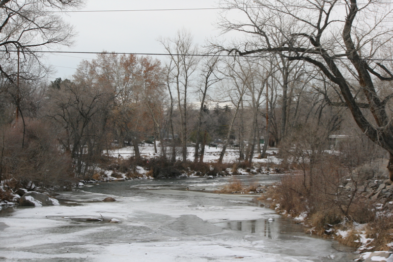An icy channel in Idlewild Park. January 2016.