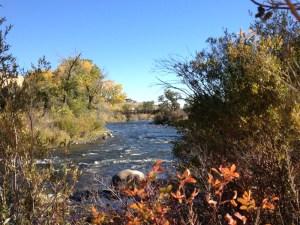 Truckee River, Dorosktar Park. October 21, 2016.