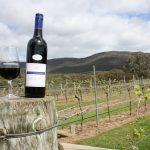 Sélection vins côtes du Rhône