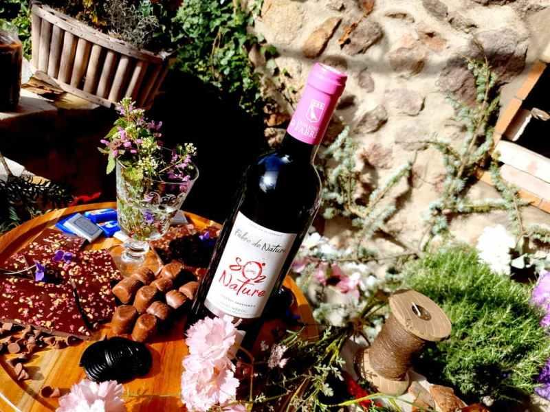 Accord vin et chocolat : Fabre de Nature 2018