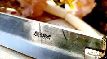 Couteau Universel Moritaka Aogami