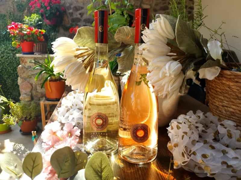 Sélection de vins pour le printemps 2021 : vins château la Castille