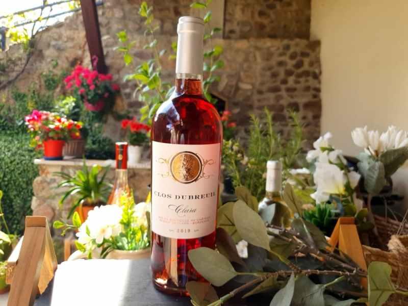 Sélection de vins pour le printemps 2021 : Clos Dubreuil