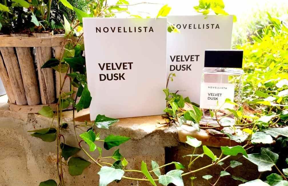 Novellista Velvet Dusk