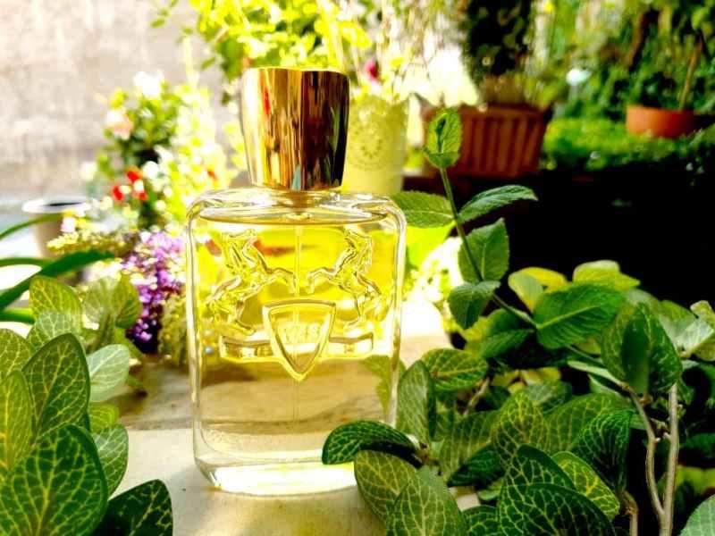 Derley Parfums de Marly - avis