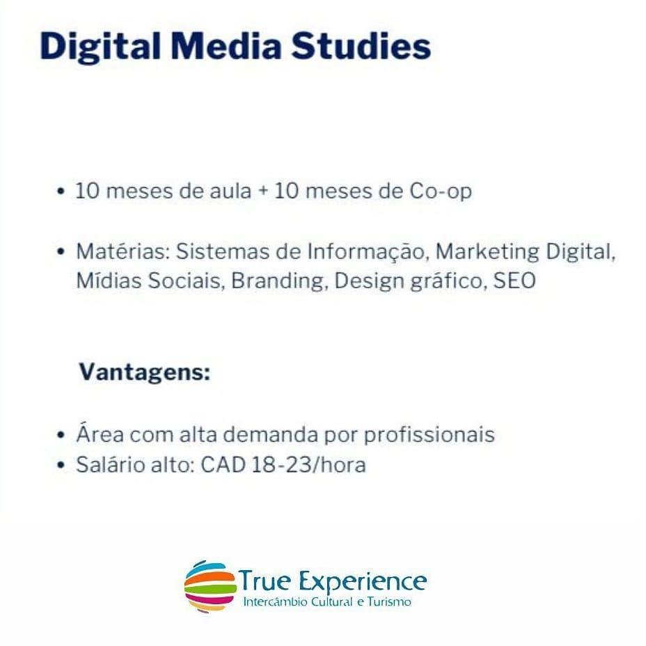Digital Media Studies