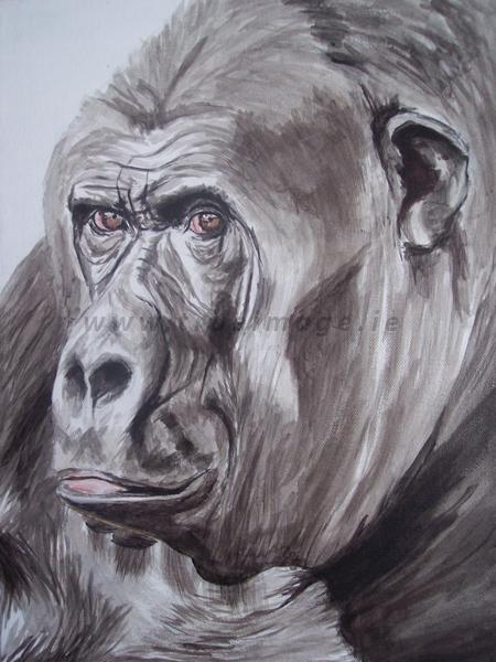 gorilla wildlife art in acrylic