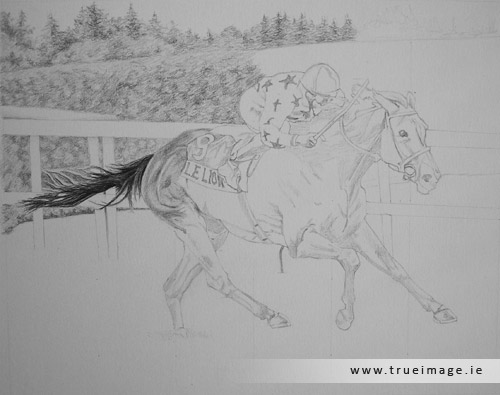 horse and jockey portrait in pencil - progress image 2