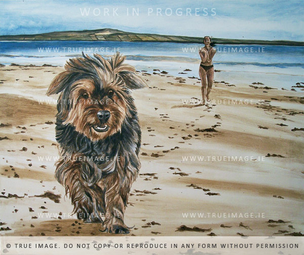 yorkshire terrier portrait painting - step 2