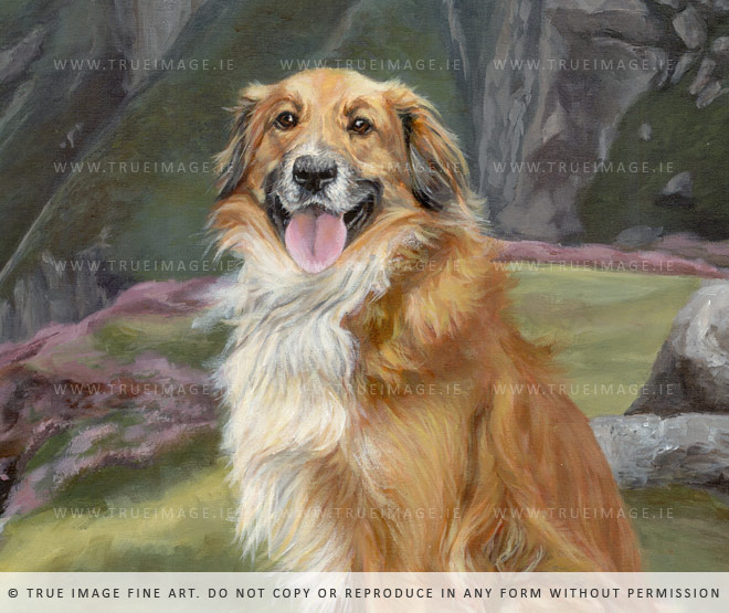 collie-painting-detail