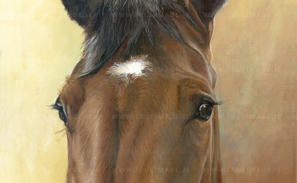 horse painting in acrylic - detail