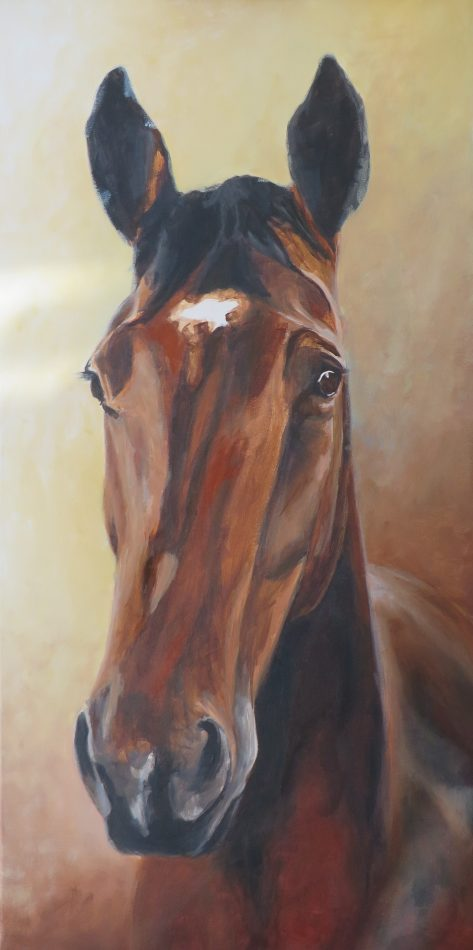 horse painting in progress 5