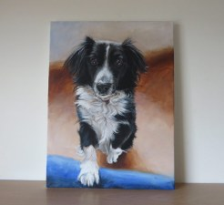 collie painting on stretched canvas