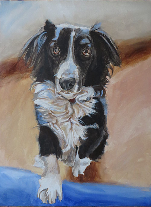 collie painting step 3