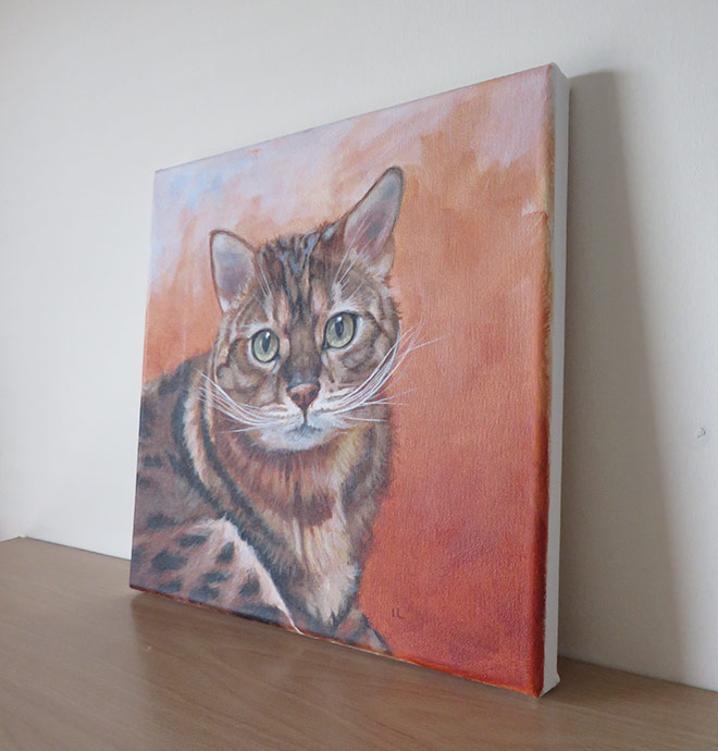 cat painting canvas