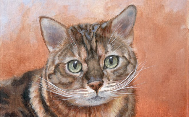 tiger cat painting