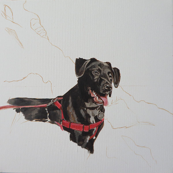 labrador painting step 2