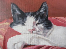 cat painting detail