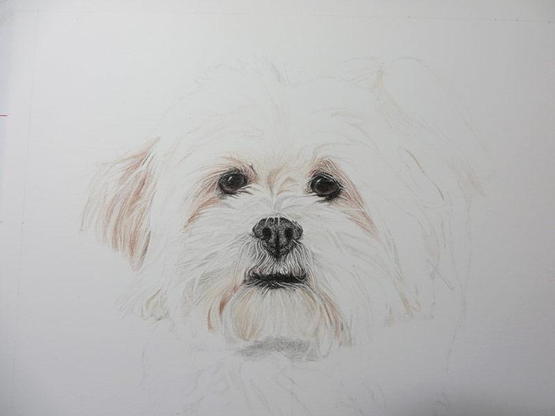 drawing progress 2