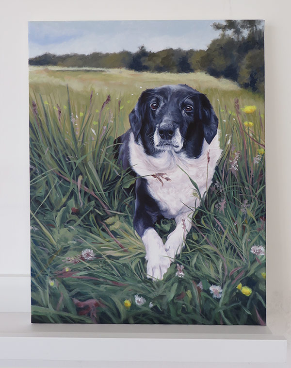 finished pet portrait on canvas