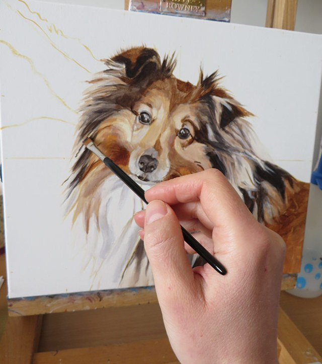 colour blocking a pet portrait