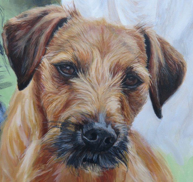 terrier cross dog portrait detail