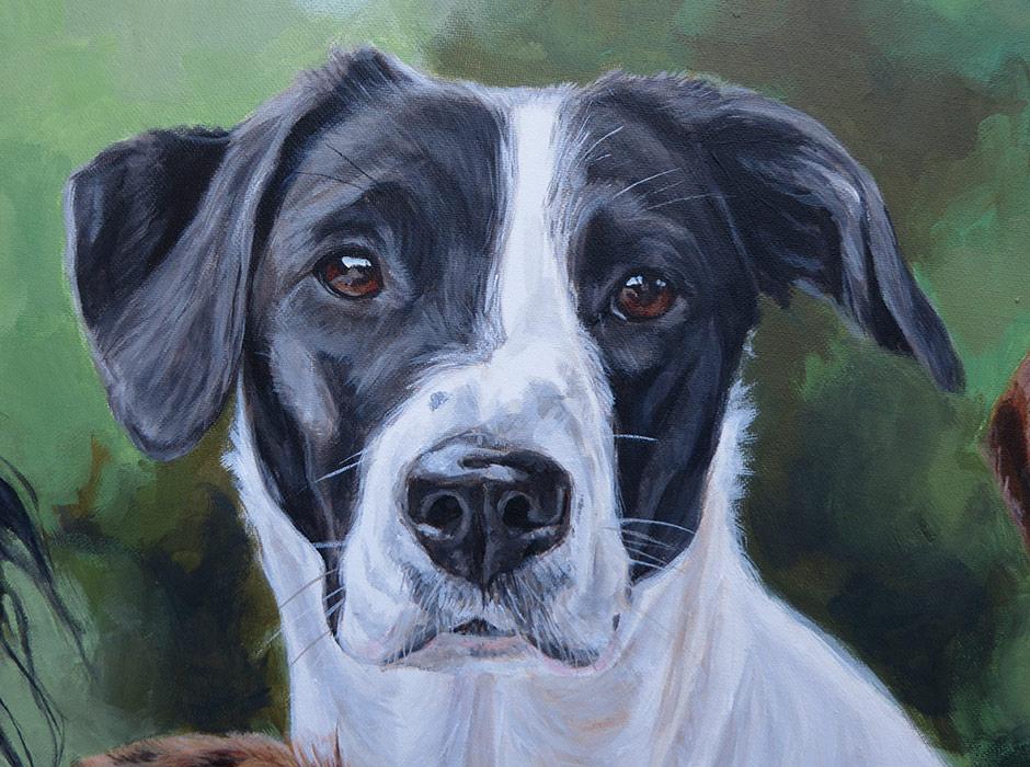 pointer labrador cross dog portrait