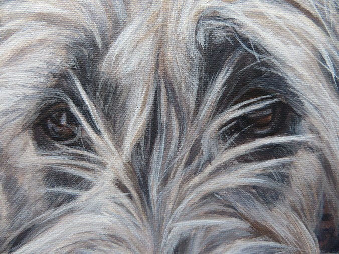 close up view of dog painting