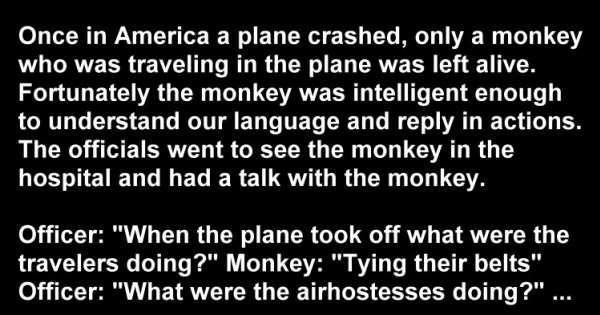Airplane Humor: Once in America A Plane Crashed