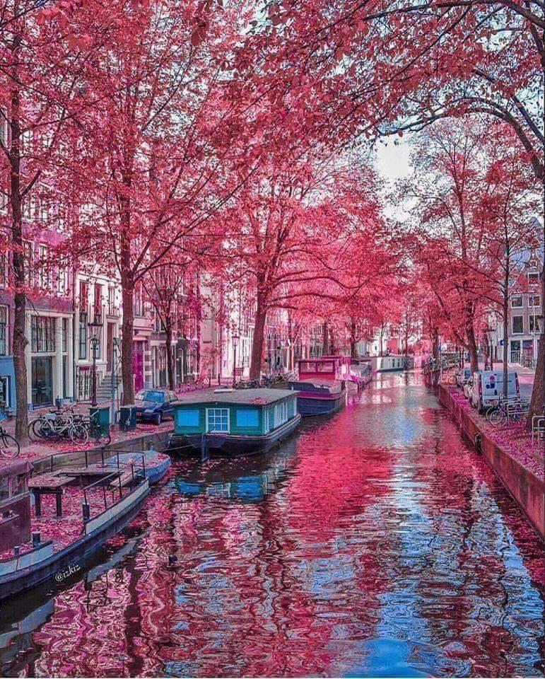 Amsterdam – Netherlands :o