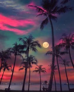 Dreamy night  Singapore.