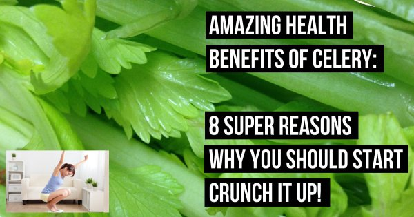 Health Benefits Of Celery. 8 Super Reasons You Should Start Crunch it Up!