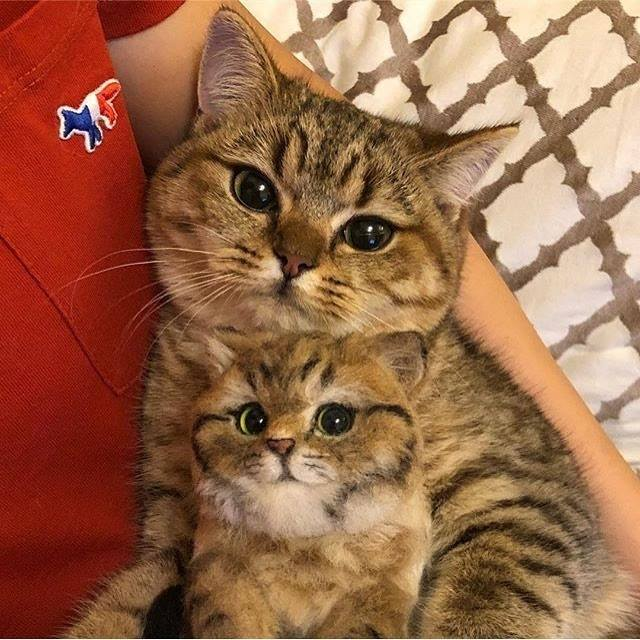 Mother and Daughter <3 <3